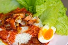 食物泰国猪肉的米 库存图片