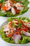 食物泰国草本的沙拉 库存照片