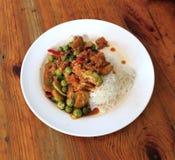 食物泰国moo的prikkaeng 库存照片