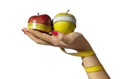 食物现有量健康服务 免版税库存照片