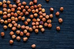 食物的成熟榛子 与文本空间的有机食品土气横幅模板 库存照片