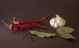 食物的辣的香料 免版税库存图片