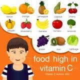食物的以图例解释者高在维生素C 库存例证