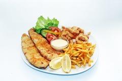 食物盛肉盘海运 免版税库存照片