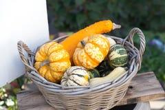 食物篮子概念 在木柳条的五颜六色的万圣夜南瓜 秋天农夫收获,概念性感恩的天 免版税库存图片