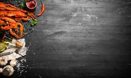 食物纤巧 新鲜的煮沸的小龙虾用香料和草本 免版税库存照片