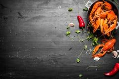 食物纤巧 煮沸的小龙虾用草本和辣胡椒 库存图片