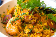 食物肉菜饭西班牙语traditionnal 免版税库存照片