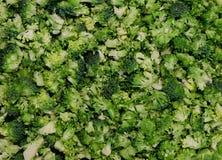 食物背景样式-新鲜的未加工的切的硬花甘蓝,准备为烹调-生物健康绿色食物概念 免版税图库摄影