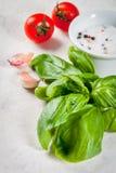食物背景用香料 库存图片