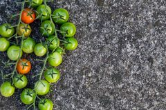 食物背景:绿色,红色西红柿,石背景,顶视图 库存图片