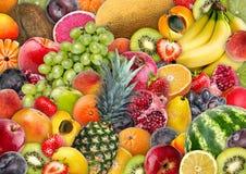 食物背景-被分类的水多的果子 免版税库存图片