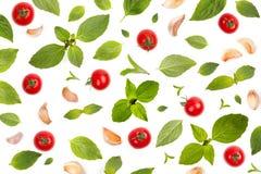 食物菜单和墙纸概念的成份样式 免版税图库摄影