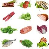 食物菜肉绿色,鱼 皇族释放例证