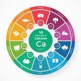 10食物高在钙 营养infographics 免版税库存图片