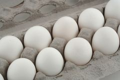 食物鸡蛋 免版税图库摄影
