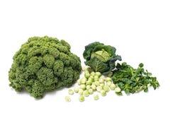 食物:冬天绿色菜,无头甘蓝,抱子甘蓝,领域婆罗双树 免版税库存照片