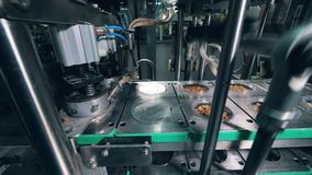 食用植物机制与容器一起使用用干面包 食品包装线 股票视频