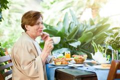 食用的妇女茶 库存照片