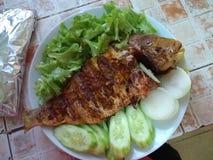 食用鱼被盘问的热的辣印地安人 库存图片