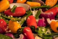 素食者和胡椒准备好烤 免版税库存图片