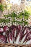 素食者在农夫的市场上 免版税库存照片