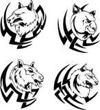 食肉动物的动物顶头纹身花刺 免版税图库摄影