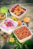 素食膳食、素食食物-燕麦粥用水果酸牛奶和水果沙拉 图库摄影