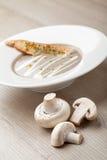 素食蘑菇奶油汤purée用被烘烤的面包乳酪sl 免版税库存图片