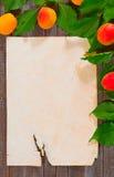 食谱的纸 免版税库存图片