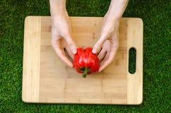 素食主义者和烹调在题材的本质:拿着一个红辣椒和一把刀子在切板和backgroun的人的手 免版税库存图片