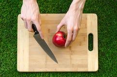 素食主义者和烹调在题材的本质:拿着一把刀子和一个红色苹果在切口公猪的背景的人的手 免版税库存图片
