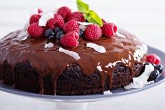 素食主义者巧克力蛋糕 免版税库存图片