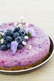 素食主义者未加工的蓝莓蛋糕 图库摄影