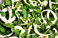 菠菜、茴香和薄菏沙拉 免版税库存照片