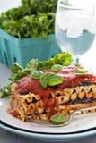 素食主义者烤宽面条用茄子和豆腐 库存照片