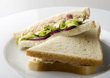 素食主义者的三明治 免版税库存照片