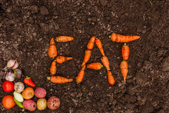 素食主义者的新鲜食品 健康的食物 库存照片