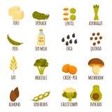 素食主义者蛋白质象 库存照片