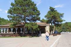 餐馆terrasse在工业的街道,房子18的de lago 蝴蝶日草夏天晴朗的swallowtail 免版税库存照片
