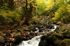 饥饿小河秋天风景,哥伦比亚河峡谷,俄勒冈 免版税库存照片