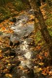 饥饿小河秋天,哥伦比亚河峡谷,俄勒冈 图库摄影