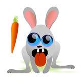 饥饿的兔子 免版税库存图片