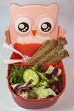 饭盒,沙拉 免版税库存照片