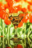 饮料和冰块到玻璃里 库存照片