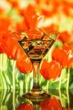 饮料和冰块到玻璃里 图库摄影