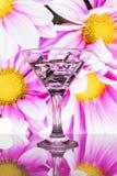 饮料和冰块到玻璃里 库存图片