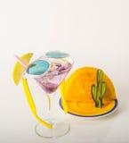 饮料装饰用果子、马蒂尼鸡尾酒玻璃、饮料staw和冰古芝 图库摄影