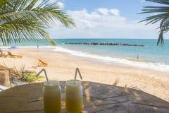 饮料 好的热带海滩看法与棕榈的 库存照片