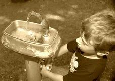 饮水器 图库摄影